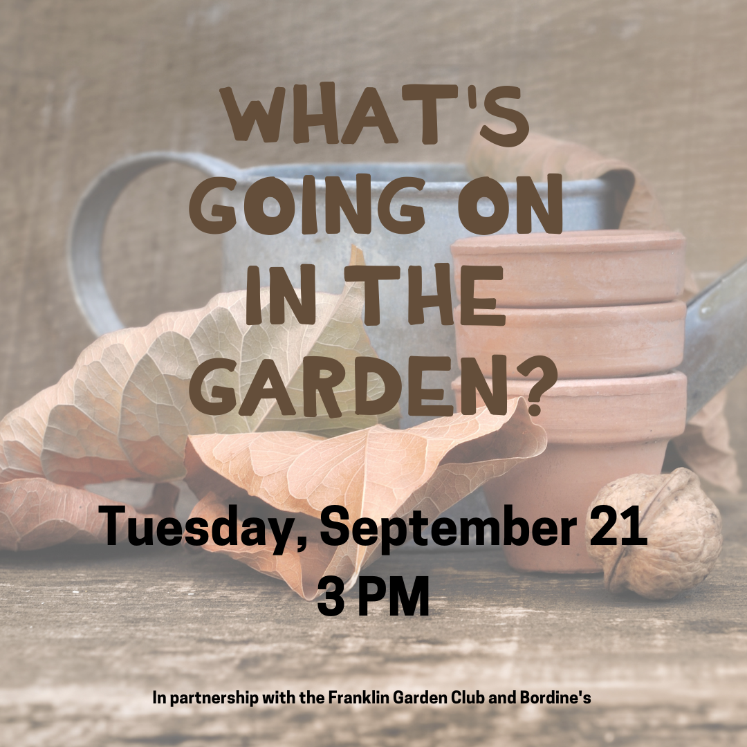 IG What's Going On in the Garden in the Fall 9.21.21.png