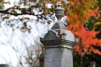 Cemetery sele with Fall colors in background